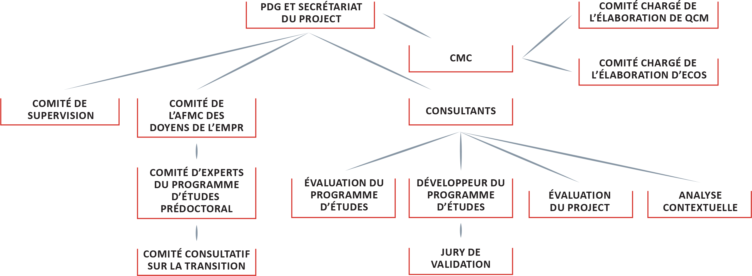 Diagram showing opioid project governance structure